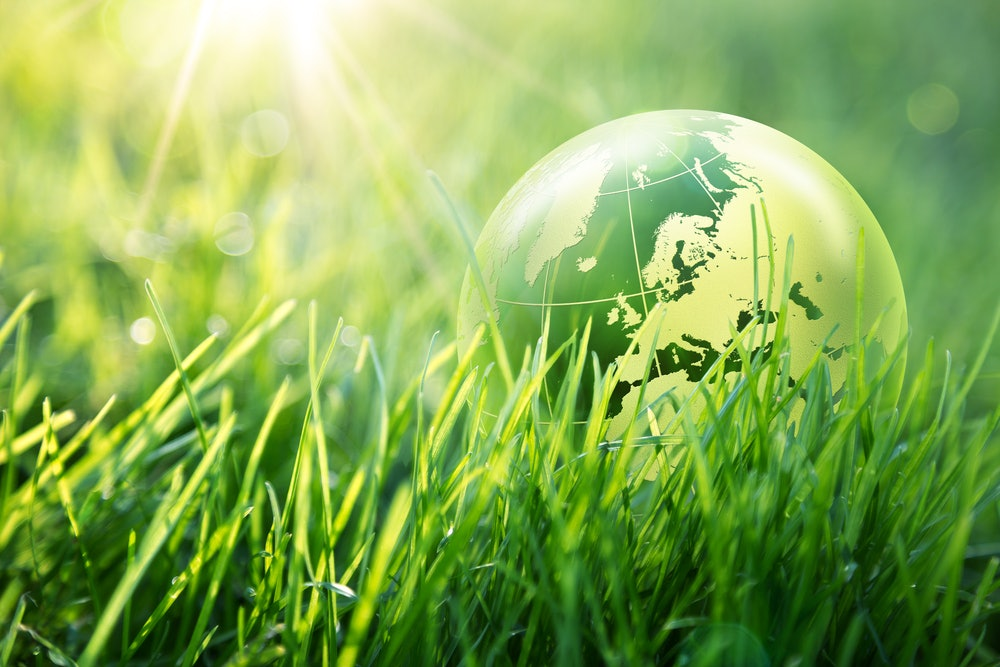 Erdball im grünen Gras
